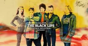 black lips1